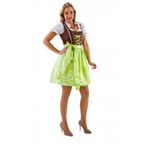 Festivalshop - Dirndl dress brown-light green checked - HH2485