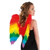 Festivalshop - Angel Wings Folded Rainbow - BO52833